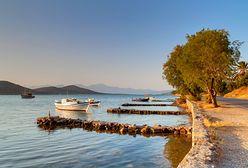 Sezon na oliwki, czyli Kreta zimą jest najwspanialsza