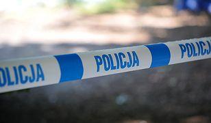 Zabójstwo 25-latki w Lublinie. Szokujące ustalenia śledczych