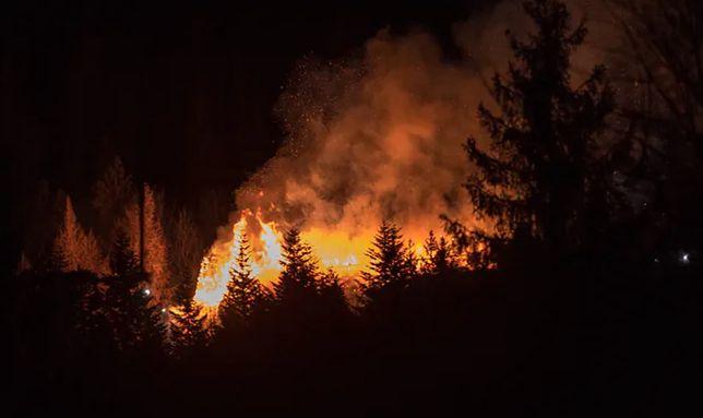 Biebrzański Park Narodowy w płomieniach. Pożar widać z odległości 5 tys. km