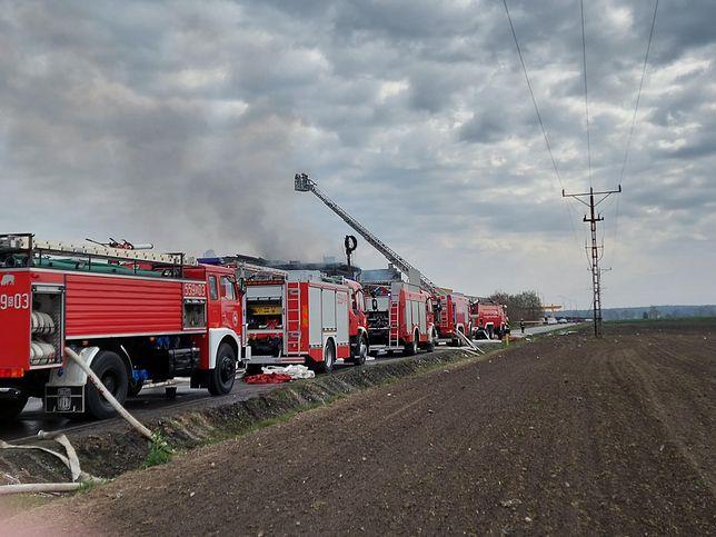 Pożar wybuchł na terenie hali produkcyjno-magazynowej w Studzienicach