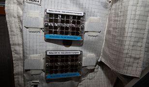 Jedno miejsce na ISS pozostaje brudne - w celach naukowych