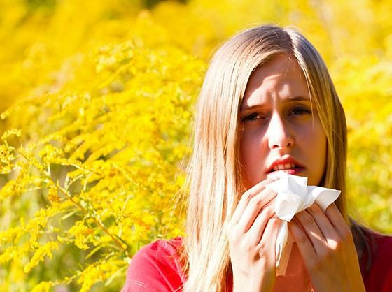 Wiedza, która przyda się alergikom