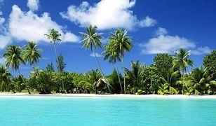 Jedna z najpiękniejszych plaż świata - Diani Beach w Kenii