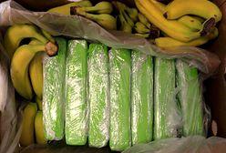 Warszawa. Bananowy transport z niebezpiecznym gratisem. 160 kilogramów narkotyku w kartonach