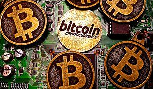 Posiadacze bitcoinów odrabiają straty. Kurs znowu idzie w górę.