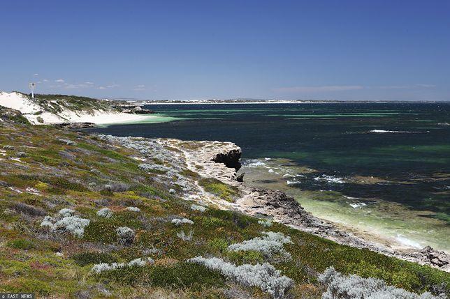Jach z kilkoma osobami na pokładzie rozbił się na rafie w Jurien Bay (Australia)