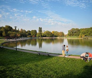 """Warszawskie parki zagrożone wycinką. """"Kpina z ochrony przyrody"""""""