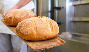 Świeżo wypieczony chleb niczym nie różni się od tego wypieczonego w sklepie? Zaskakujące wyniki.