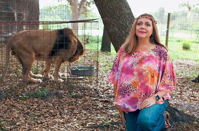 """""""Król tygrysów"""". Przez popularność show szeryf wraca do sprawy zaginięcia męża Carole Baskin"""