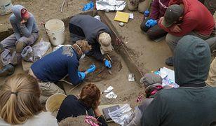 Archeolodzy odkryli szczątki dziecka sprzed 11 tys. lat. Należy do nieznanej dotąd grupy ludzi