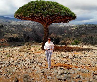 """Koronawirus: Polka na odległej wyspie Jemenu. """"To równoległy wszechświat"""""""