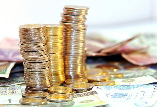 Mieszkańcy zdecydują komu przyznać 2,5 mln zł w ramach budżetu obywatelskiego