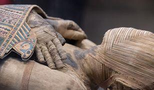 Archeolodzy znaleźli kolekcję bezcennych sarkofagów, mumii, biżuterii i wykonanych z drewna masek pogrzebowych