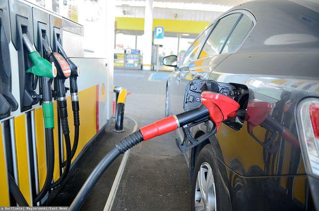 Ceny paliw na Wszystkich Świętych. Ile zapłacimy za litr benzyny i oleju?