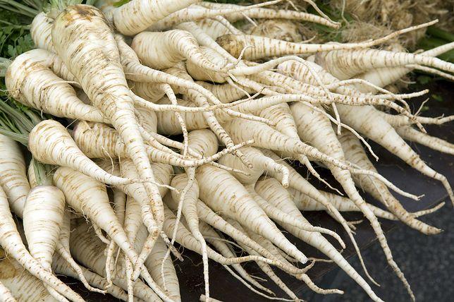 Pietruszka zwykle wykorzystywana jest do przyrządzania zup i wywarów. Przepisy z pietruszką
