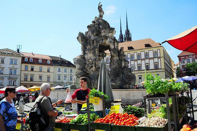 Brno, Czechy
