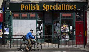 Brexit spowoduje kolejny exodus Polaków. Dokąd pojadą za pracą?