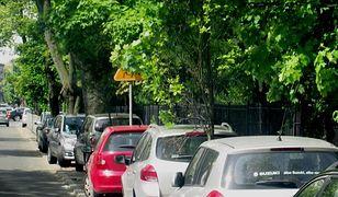 ZOM apeluje: zgłaszajmy zasłonięte znaki drogowe