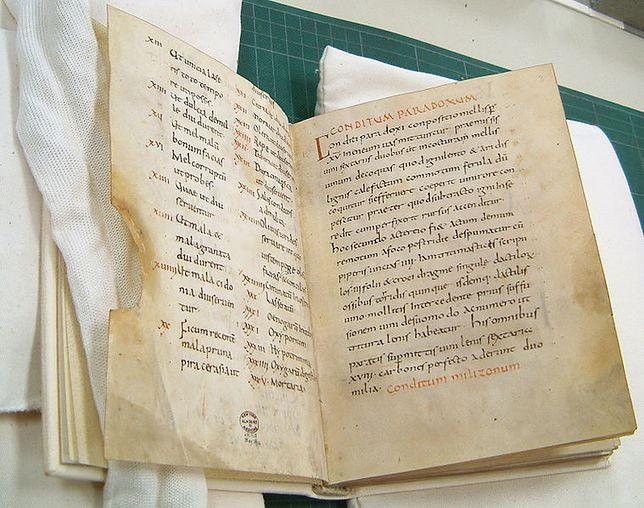 Jeden z dwóch najstarszych zachowanych manuskryptów De re coquinaria autorstwa Apiciusa, powstały w IX wieku w benedyktyńskim opactwie w Fuldzie.