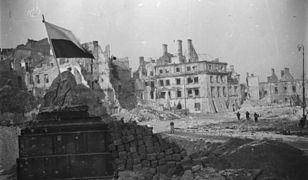 Ruiny Placu Zamkowego (zdj. arch.)