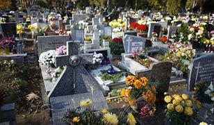 Wybierając się na cmentarz w Poznaniu lub w innym mieście wybierzmy najbardziej dogodny środek transportu