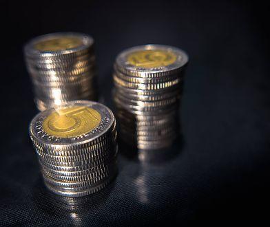 Płacisz nimi codziennie. Co wiesz o polskich banknotach i monetach?