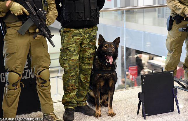 O psich emerytach ze Straży Granicznej pamiętają tylko ich opiekunowie