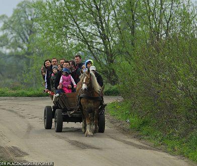 Wypadek wozu konnego w powiecie krakowskim (zdjj. ilustracyjne)