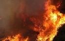 Lasy Państwowe, policja i straż pożarna przeciwko wypalaniu traw