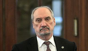 Macierewicz kazał przetłumaczyć raport? Komentarze polityków
