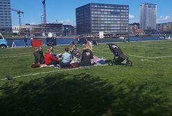 """Dania. Policja rysuje na trawie """"towarzyskie kwadraty"""""""