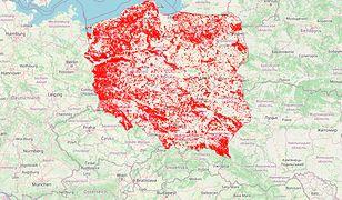"""Afera o mapę wycinki lasów. LP: """"To bardzo nierzetelny przekaz"""""""