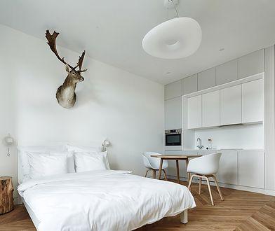 Przytulny minimalizm w zabytkowej kamienicy. Mieszkanie ma tylko 27m2, a wygląda obłędnie