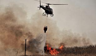Biebrzański Park Narodowy płonie od niedzieli