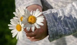 Życzenia na Dzień Matki. Serdeczne wierszyki i rymowanki dla mamy. Najpiękniejsze życzenia na 26 maja