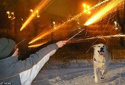 Odpalasz fajerwerki w Sylwestra? Warto, abyś to przeczytał