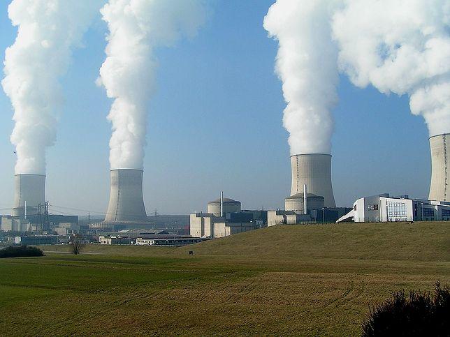 Działacze Greenpeace wdarli się do elektrowni atomowej. Odpalili fajerwerki