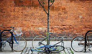 Policja znalazła sposób na złodziei rowerów