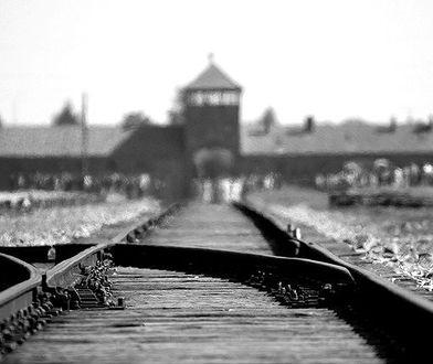 """Książka oparta na faktach - """"Położna z Auschwitz"""""""