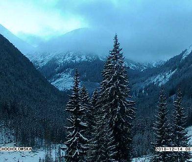 Prognozy przewidują w wysokich partiach Tatr i Karkonoszy zachmurzenie całkowite i opady śniegu