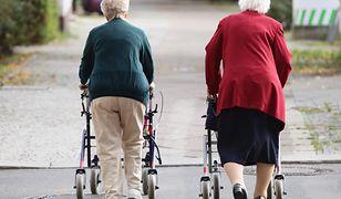 Seniorzy znaleźli sposób na nudę