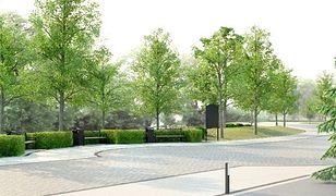 Główna aleja ZOO do remontu. Przybędzie 436 nowych drzew