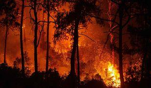 Pogoda w Turcji i Grecji. Pożary mogą nabrać rozpędu
