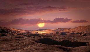 NASA odkryła planetę Kepler-1649c. Tak może wyglądać z powierzchni