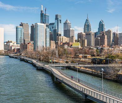 USA. Na ulicach Filadelfii znaleziono 1,5 tys. martwych ptaków