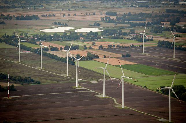 W 2013 roku PGE i Energa Hydro wydały na zakup farm wiatrowych 1,1 miliarda złotych