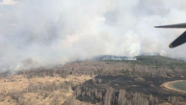 Pożar lasu w Czarnobylu. Ogień zajął 20 hektarów zieleni w zamkniętej strefie