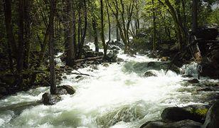 Bridalveil Creek - zdjęcie ilustracyjne
