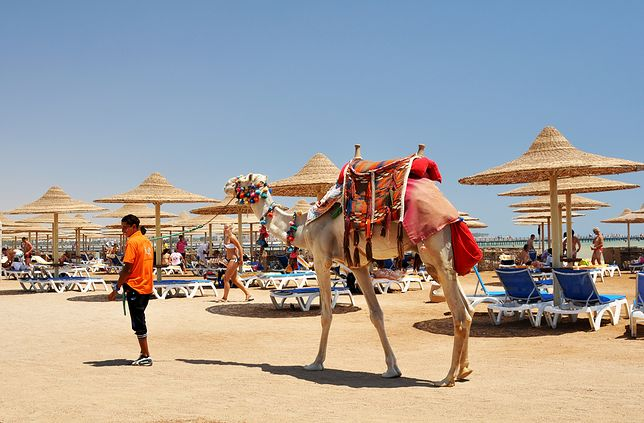 Miejsce 5. Egipt
