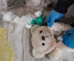 Białystok. Pluszowy miś wypełniony narkotykami znaleziony przez psa policyjnego